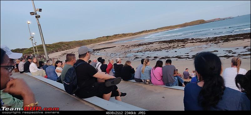 Phillip Island, Great Ocean Road - 12 Apostles & a Kia Sportage-penguins-parade-1.jpg