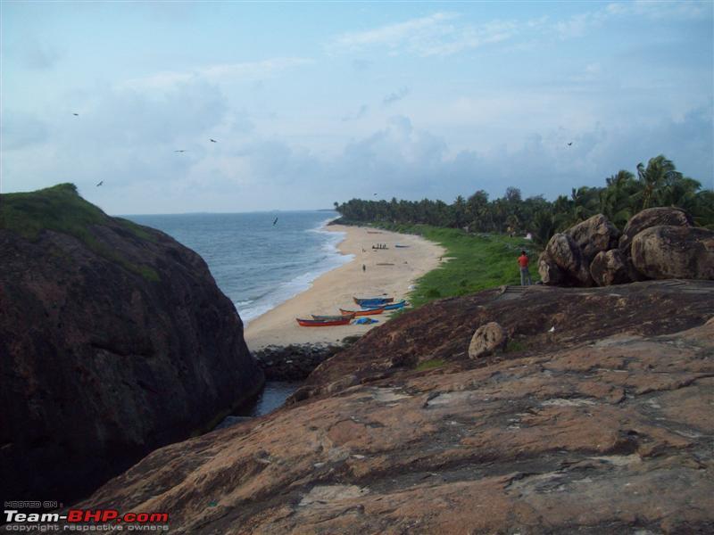 Name:  Cove Medium.jpg Views: 4541 Size:  58.4 KB