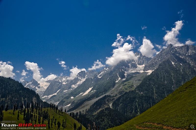 Knee bursting, toe crushing, back breaking trek into heaven - Kashmir!-dsc_31522.jpg