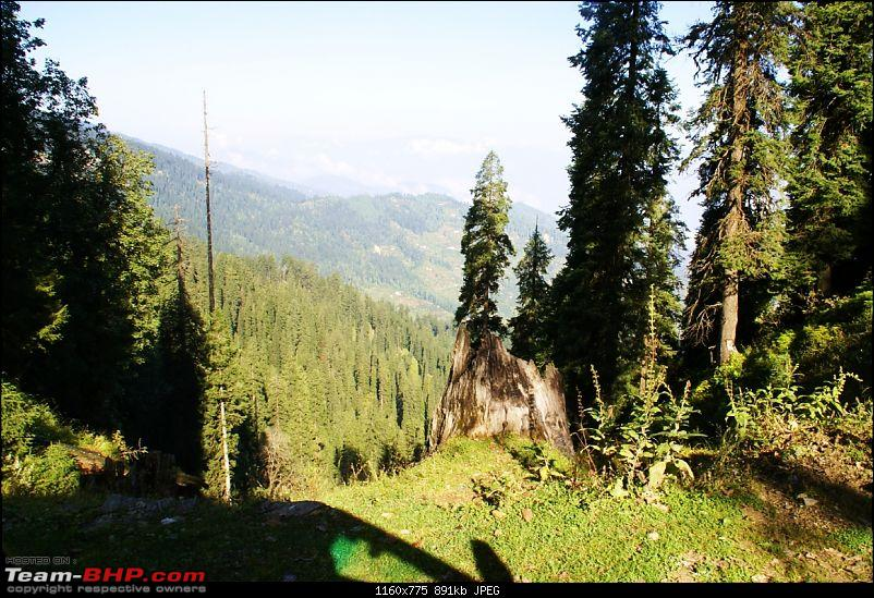 The Himachal Tribal Circuit - 2009-resized_09-hatu-road-view.jpg