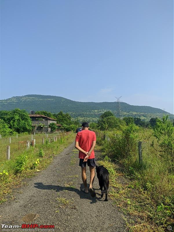 Tales of Shadow The Dog | Travels with my black German Shepherd-ranwalking.jpg