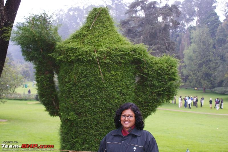 Name:  a Ooty Botanical Garden_Want Coffee from this kettle.JPG
