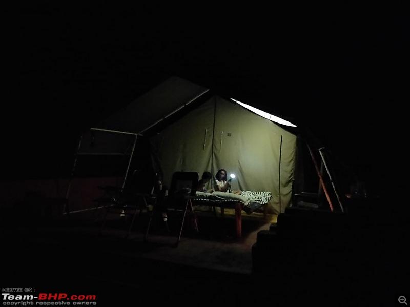 Our Wild Classroom - Panna Tiger Reserve-night-shot-1.jpeg