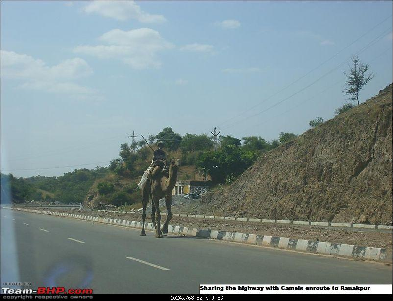 5800 km long drive back in history to Rajasthan from Bangalore and back-stp65153.jpg