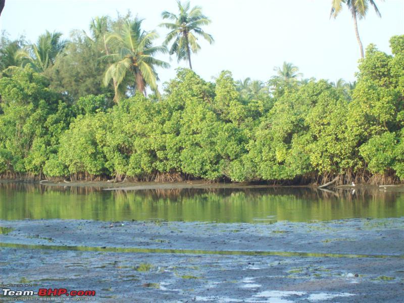 Name:  Lagoon.jpg Views: 2937 Size:  100.1 KB
