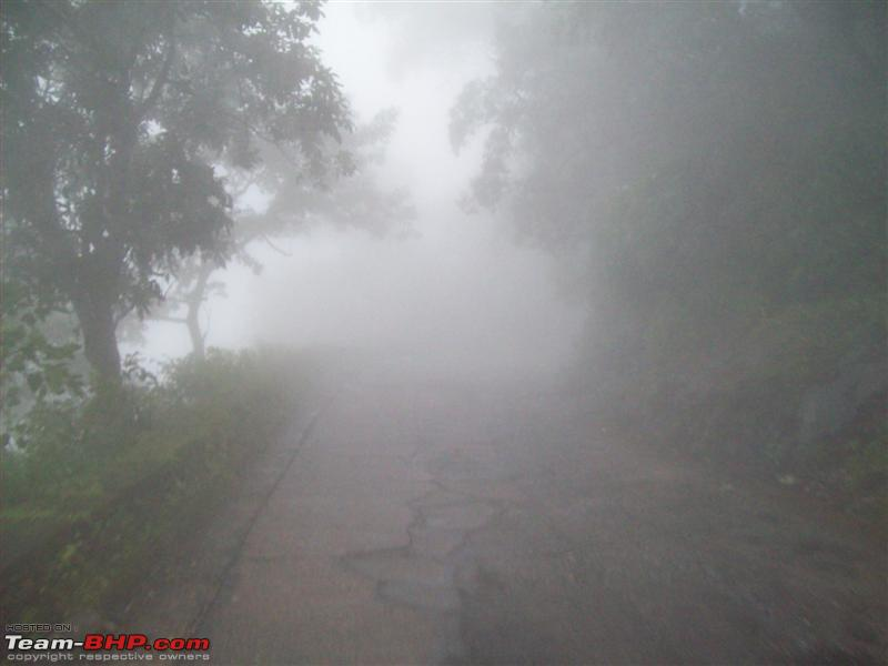 Name:  Magical Agumbe Medium.jpg