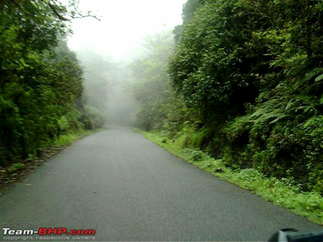 Name:  Kudremukh forests  Small.png