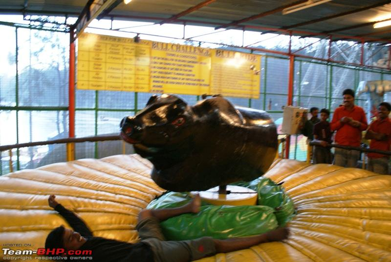 Name:  s The bull defeated me.JPG Views: 1938 Size:  220.0 KB