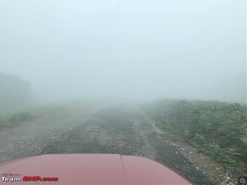 Monsoon Drive to Bhadra Tiger Reserve - A Photologue-img_0328.jpg