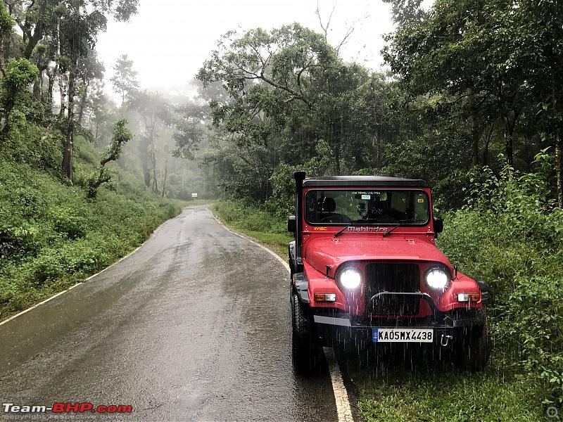 Monsoon Drive to Bhadra Tiger Reserve - A Photologue-img_6491.jpg