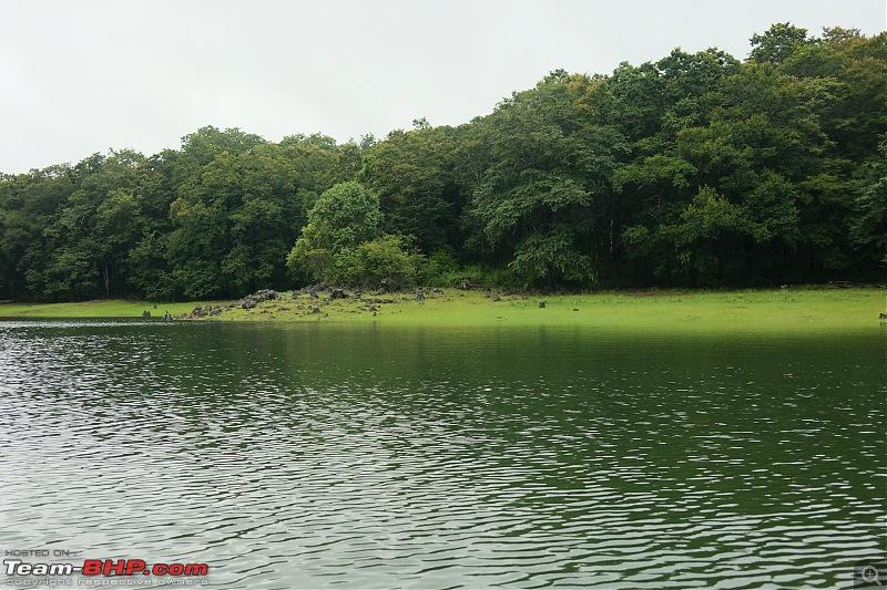 Monsoon Drive to Bhadra Tiger Reserve - A Photologue-dscf2164.jpg