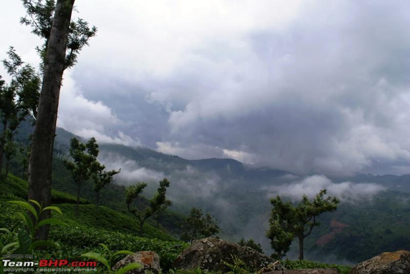 Name:  h  Dolphins Nose_Valley is covered in mist.JPG Views: 2319 Size:  169.1 KB
