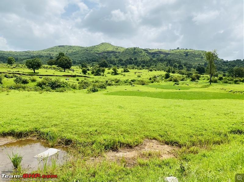 3 Thars and a Monsoon Drive to the Western Ghats-144e0974f23c45a3909fe5bee0d4a1f5.jpeg