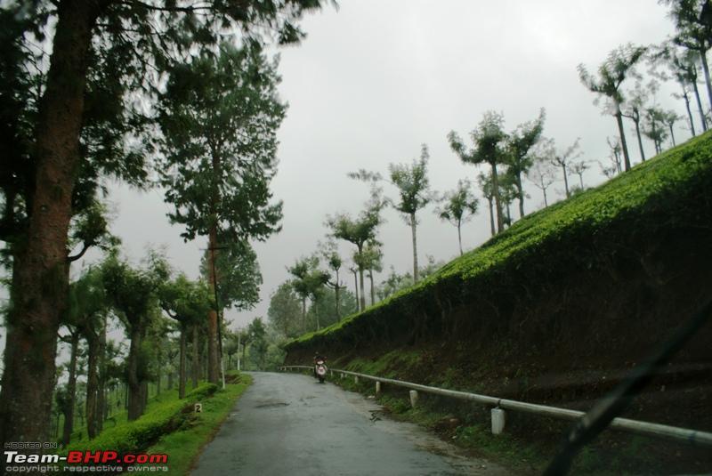 Name:  m Way back to Coonoor_water pipe_Tea estates.JPG Views: 1353 Size:  210.6 KB