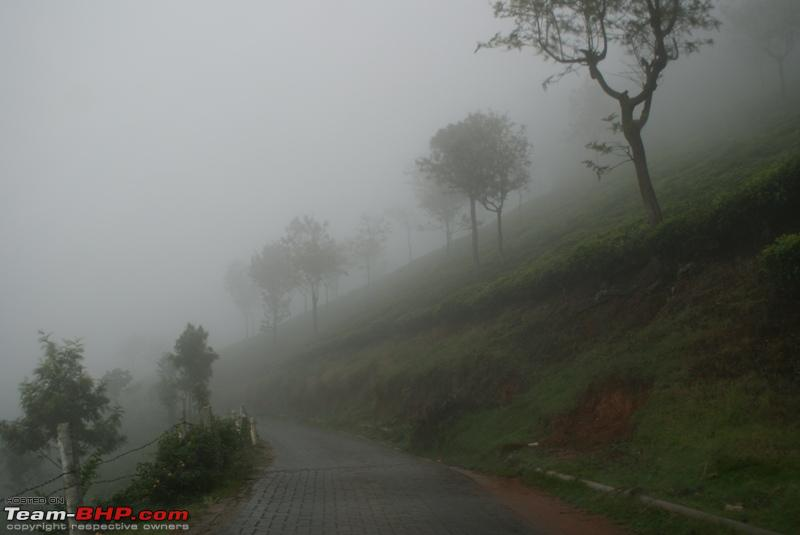 Name:  o Way back to Coonoor_heavy mist.JPG