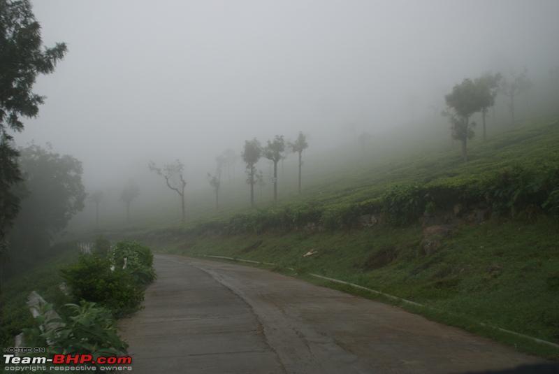 Name:  p Way back to Coonoor_mist covered estates.JPG Views: 1326 Size:  122.5 KB