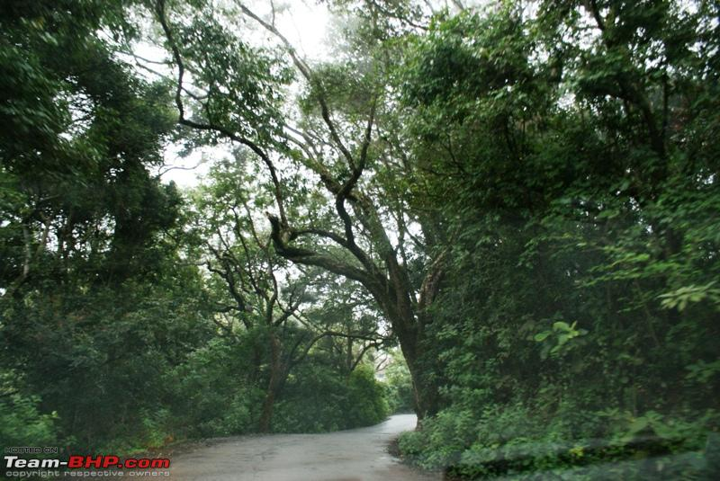 Name:  t Way back to Coonoor_beautiful trail.JPG Views: 1346 Size:  288.7 KB
