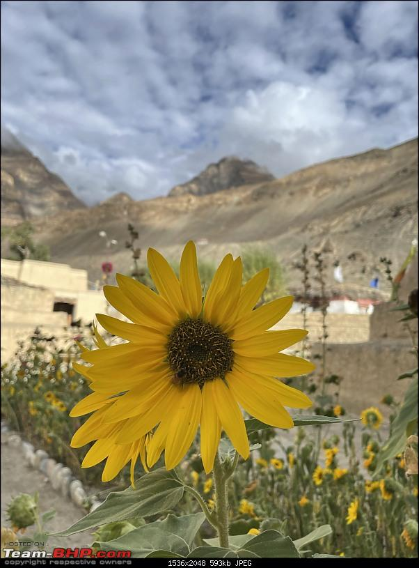A Divine Call to Spiti Valley!-img_0924.jpeg