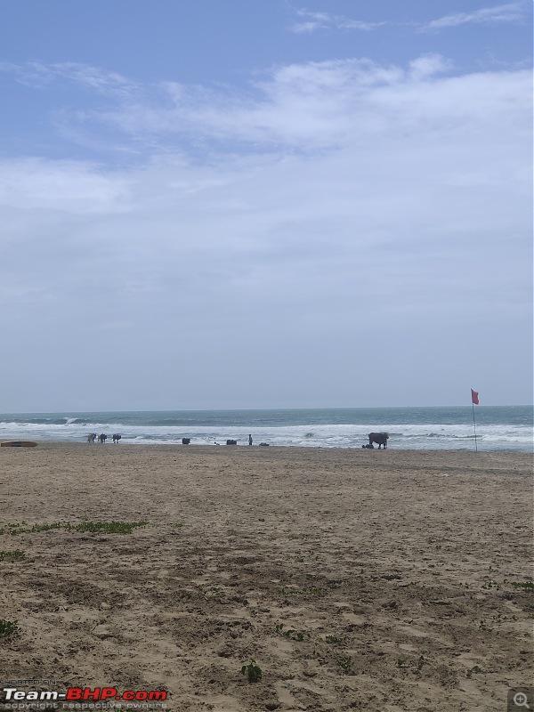Five Friends on four wheels - A coastal road trip-img_20210930_125216.jpg