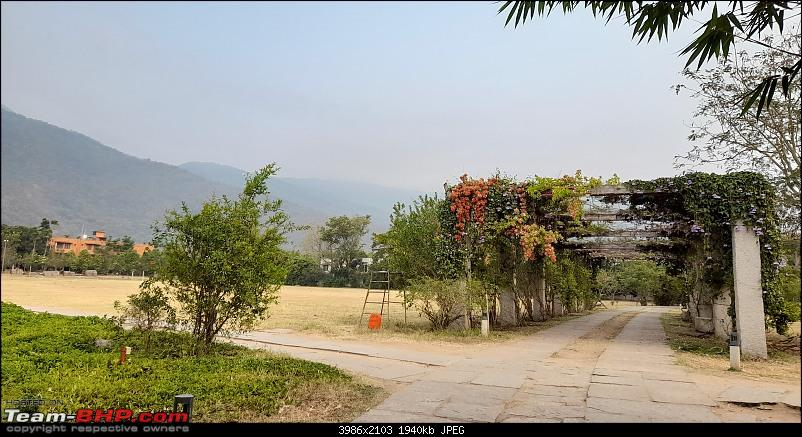 Baloo & I: Reset at an Ashram, and drive into the glorious past of the Chola empire-part2-pic11-pathway.jpg