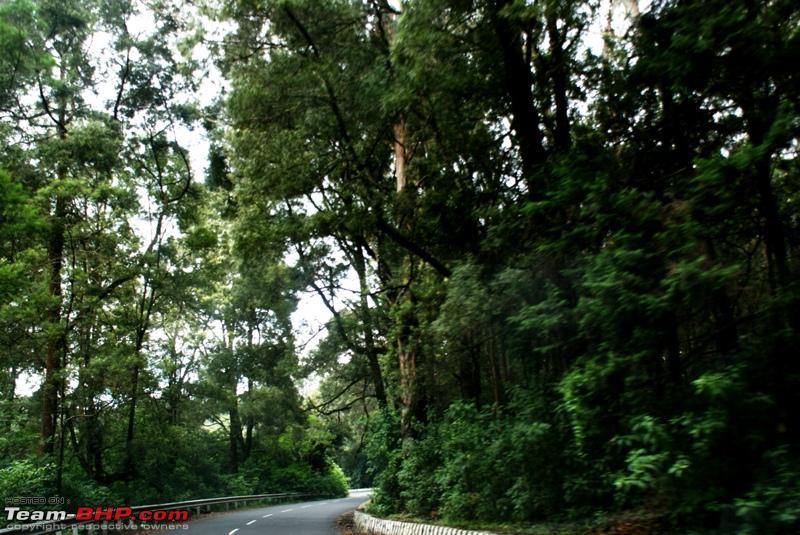 Name:  b Road to Ooty.JPG Views: 1835 Size:  292.3 KB