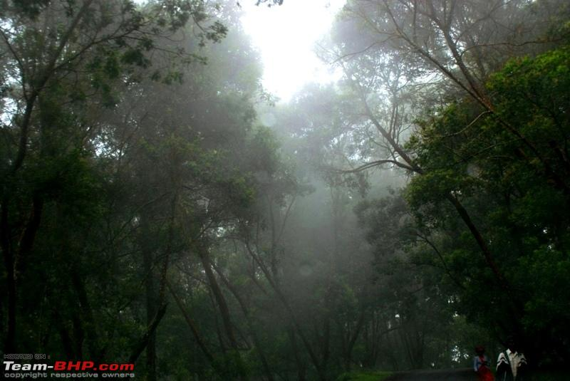 Name:  n Heavy fog about to descend.JPG Views: 1592 Size:  194.9 KB