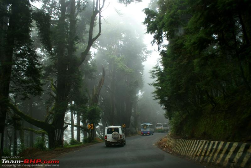 Name:  d Mysore Highway_light fog.JPG