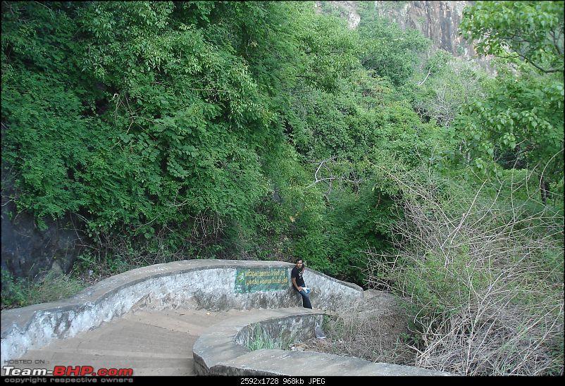 Bangalore-> Kolli hills-> Bangalore-dsc03948.jpg
