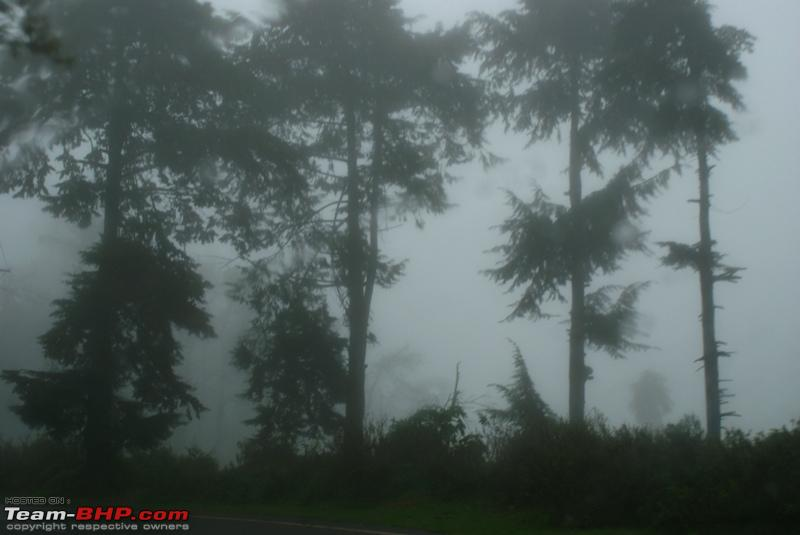 Name:  s Fog.JPG