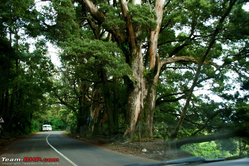 Name:  k Highway to Mysore.JPG