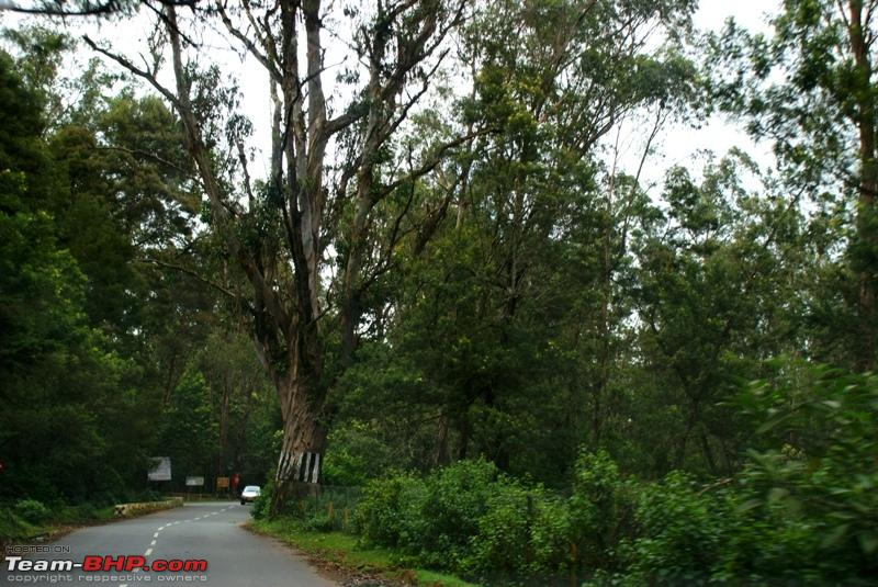 Name:  l Highway to Mysore.JPG