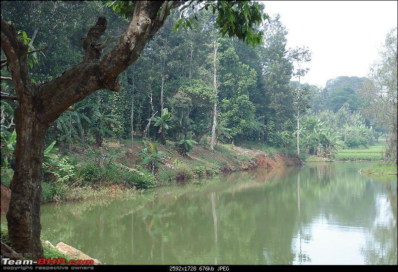 Bangalore-> Kolli hills-> Bangalore-dsc04210.jpg