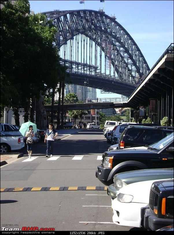 Some Sydney (and suburb) pictures-dsc00564d.jpg