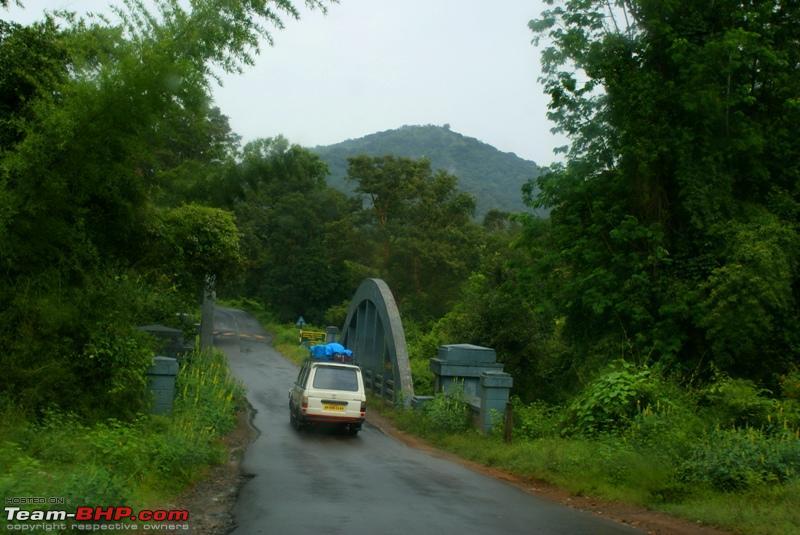 Name:  g Mudumalai Forest.JPG Views: 8654 Size:  235.0 KB