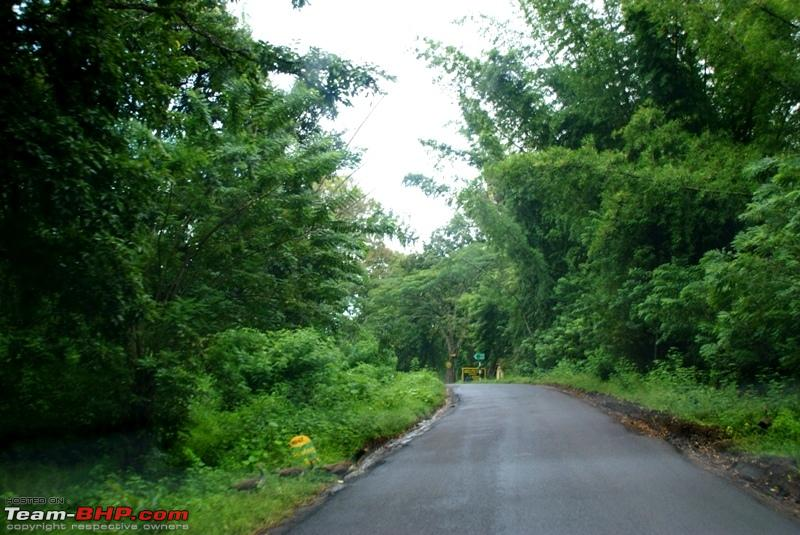 Name:  i Mudumalai Forest_great roads.JPG