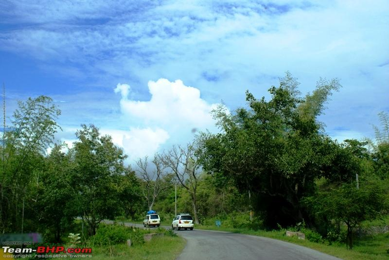Name:  a Bandipur Forest.JPG
