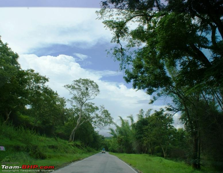 Name:  g Bandipur_Road so straight.JPG