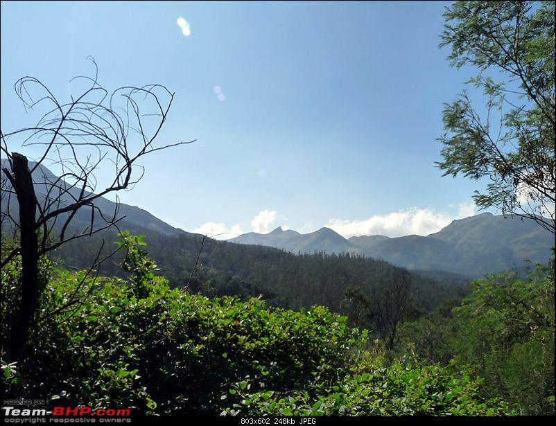 'Xing'ing around ! - A weekend trek to Mukurthi Peak near Ooty...-023.jpg