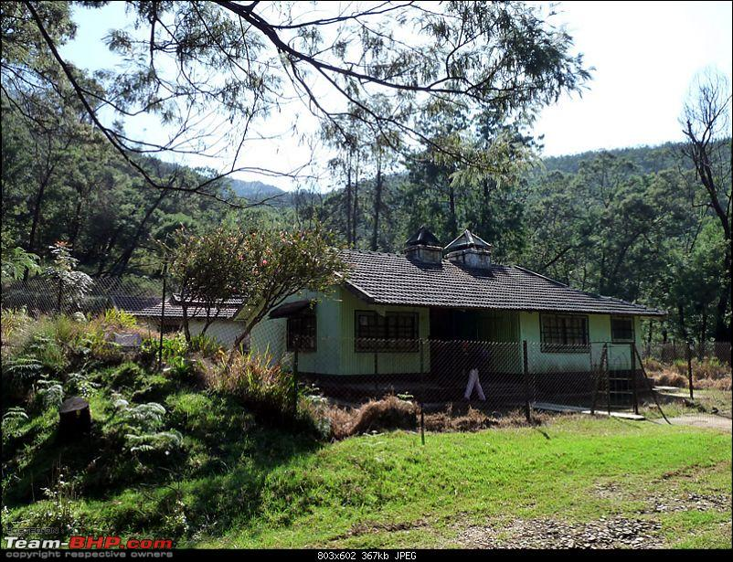'Xing'ing around ! - A weekend trek to Mukurthi Peak near Ooty...-030.jpg