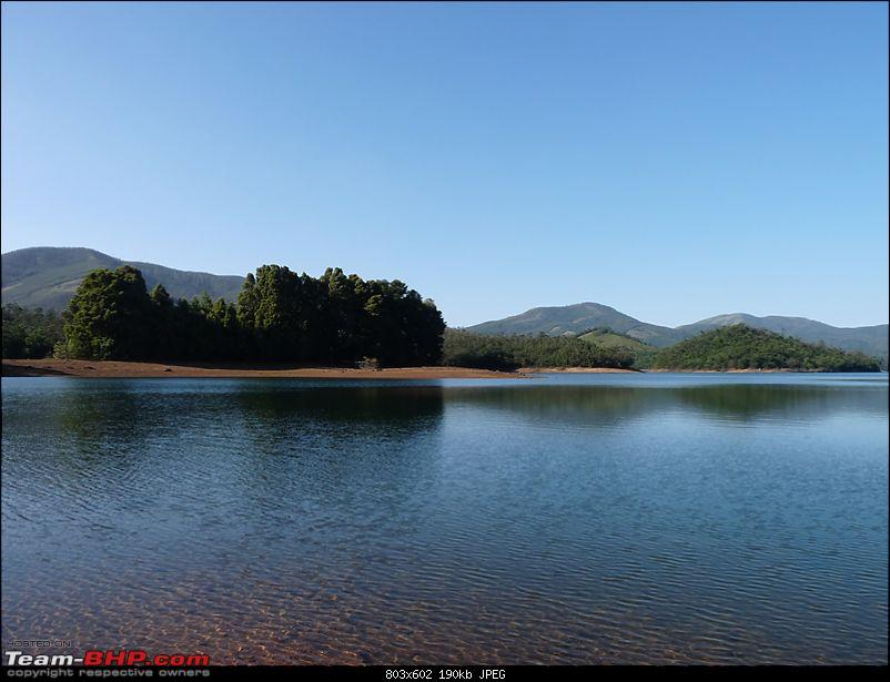 'Xing'ing around ! - A weekend trek to Mukurthi Peak near Ooty...-039.jpg