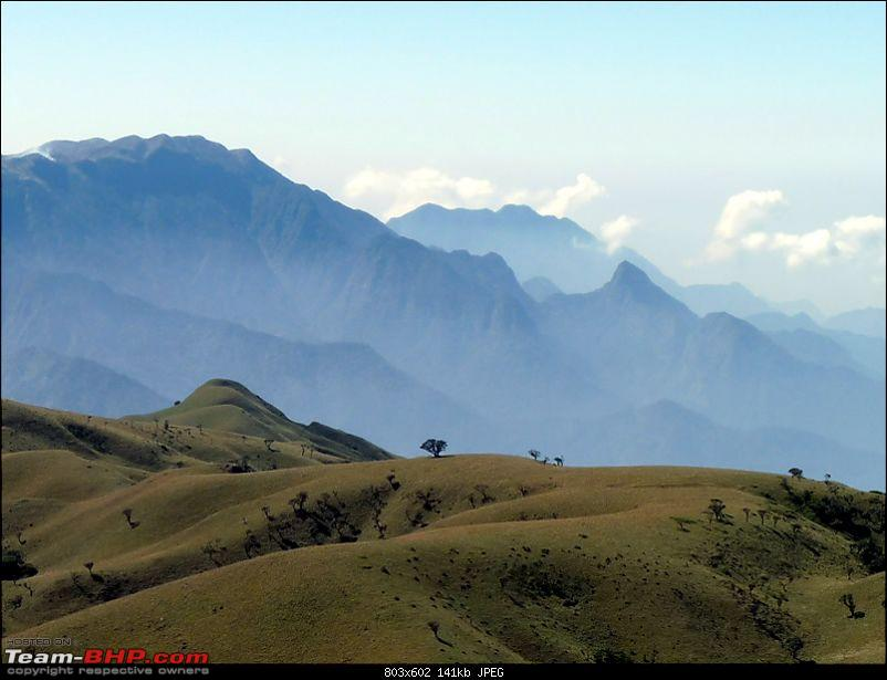 'Xing'ing around ! - A weekend trek to Mukurthi Peak near Ooty...-095.jpg