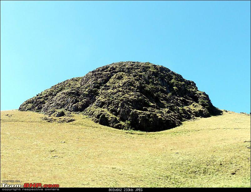 'Xing'ing around ! - A weekend trek to Mukurthi Peak near Ooty...-101.jpg