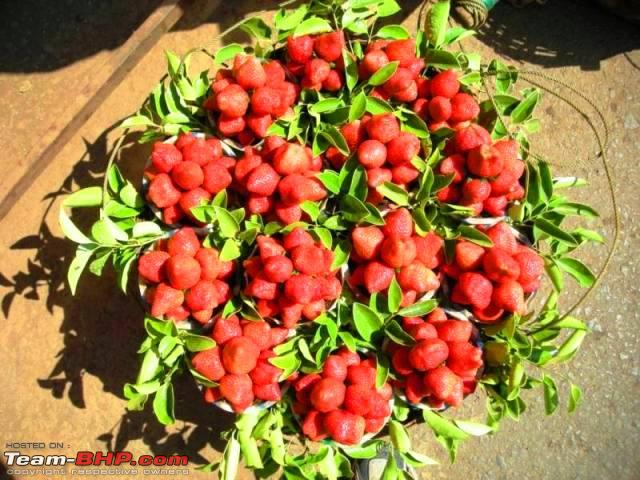 Name:  Strawberries in Mahabaleshwar.jpg