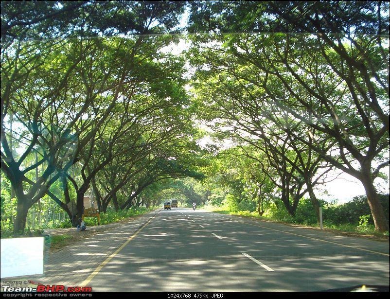 Peaceful Pondicherry - Nov 27 to 29-dsc02558.jpg