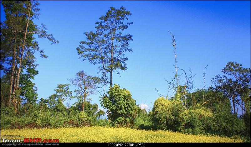 A trip to Arunachal Pradesh - Nameri National Park-img_5372_3_4_1.jpg