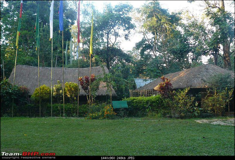 Nameri, Bhalukpong and the Splendid Jia Bhoreli : What a Weekend!-p1040005.jpg