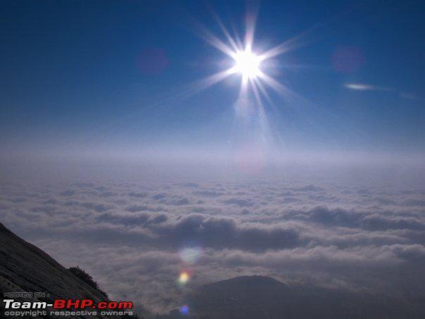 Name:  11538_196104485587_599115587_3518401_4314229_n.jpg Views: 73578 Size:  24.0 KB