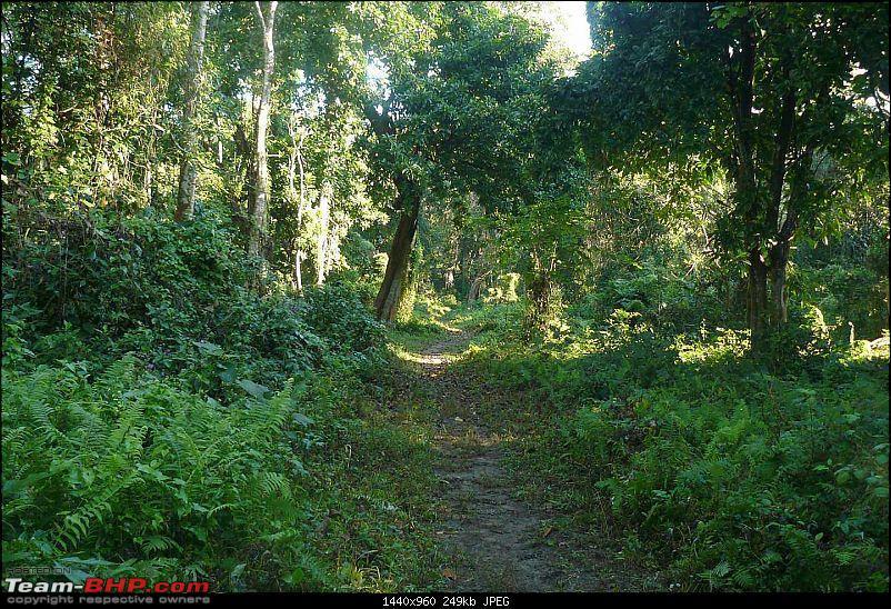 Nameri, Bhalukpong and the Splendid Jia Bhoreli : What a Weekend!-p1040030.jpg