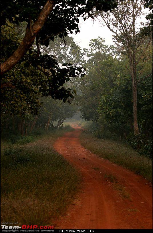 Our shortest trip into Srisailam forest, ever.-ss6.jpg