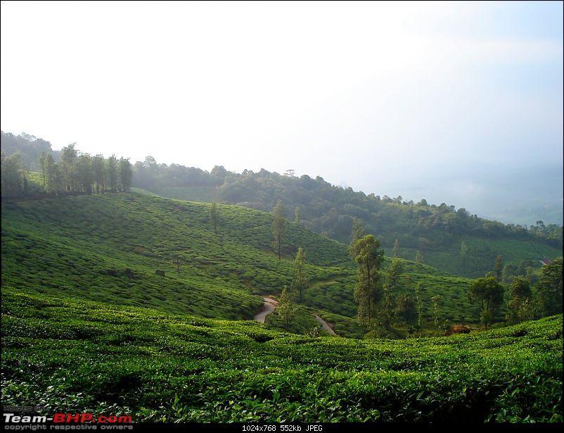 Bangalore - Coorg/North Coastal Kerala/Wayanad in Swift D!!!-dsc09844.jpg